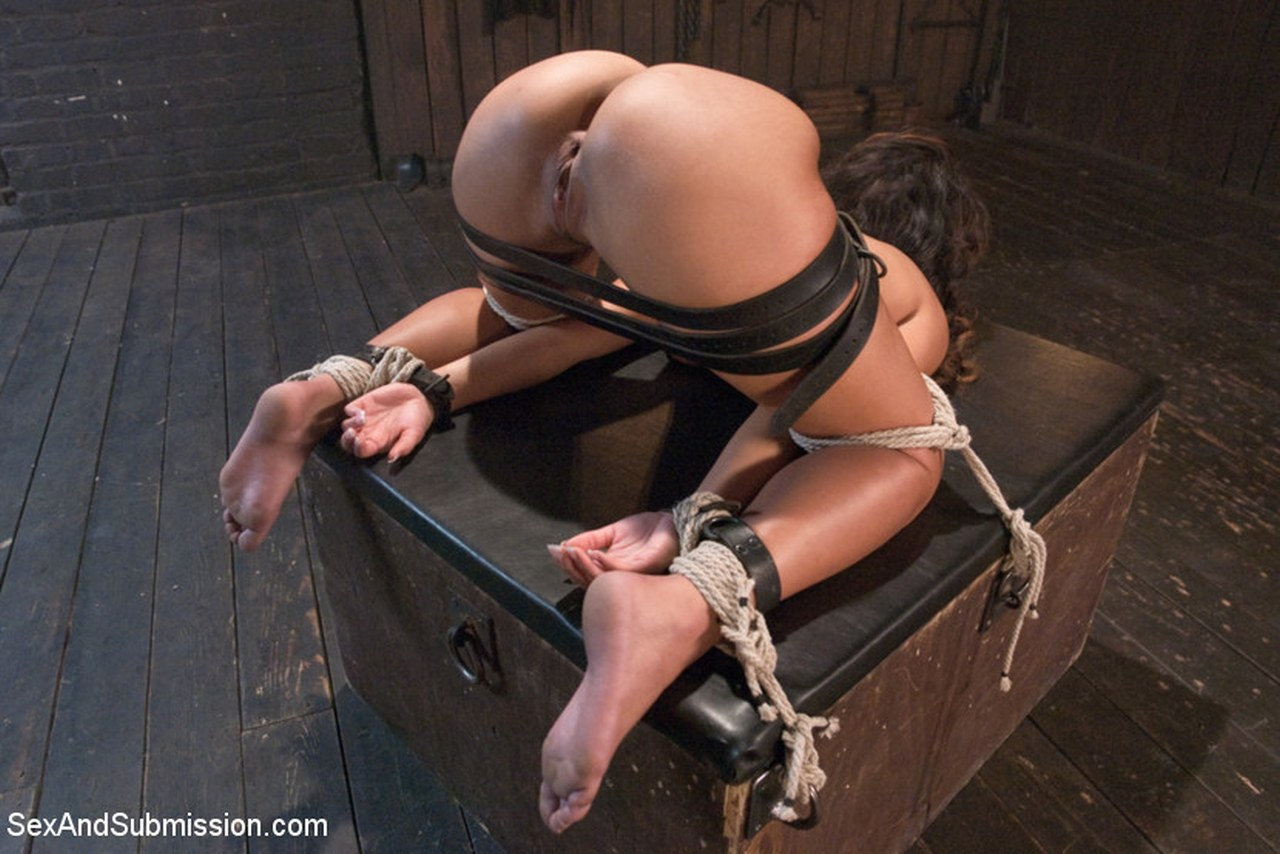 True submission and domination sex can